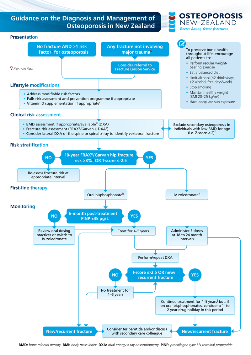 11+ Osteoporosis clinical guidelines for prevention diagnosis and management information